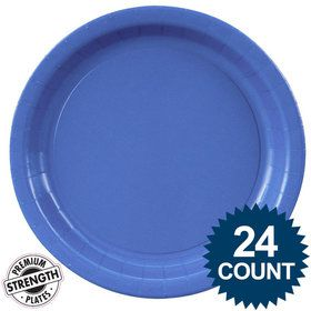 Blue Lunch Plates (24)
