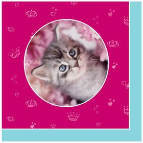 Glamour Cats Lunch Napkins by Rachael Hale