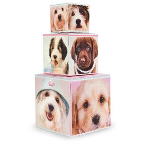 Glamour Dogs Building Blocks Centerpiece / Gift Boxes by Rachael Hale