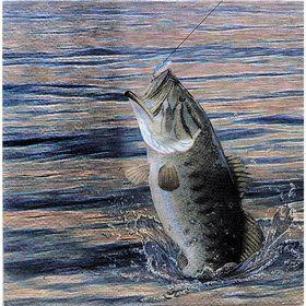Gone Fishin' Beverage Napkins (16 pack)