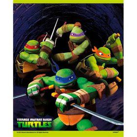 Ninja Turtles Loot Bags (8 Count)