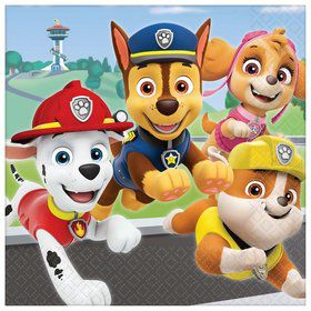 Paw Patrol Adventures Lunch Napkins (16)