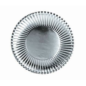 Silver Lunch Paper Plates (10)