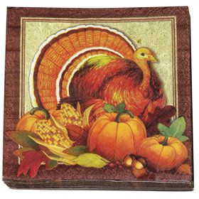Thanksgiving Luncheon Napkins (16)