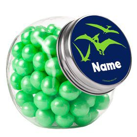 The Friendly Dinosaur Personalized Plain Glass Jars (10 Count)